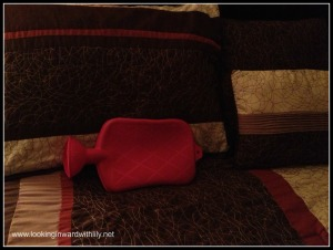 The hot water bottle 1
