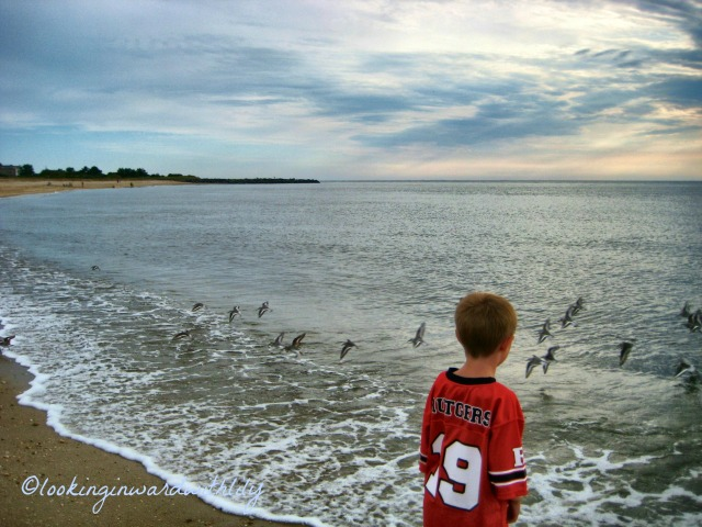 Beach Blog Picture